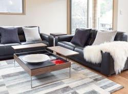 Bluebird Chalets - lounge  250x183