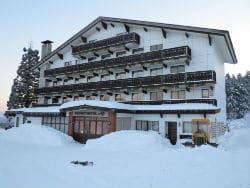 Alp hotel 250x188