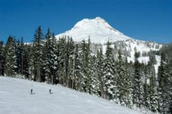 Mt Hood medows - mtn view 250x166