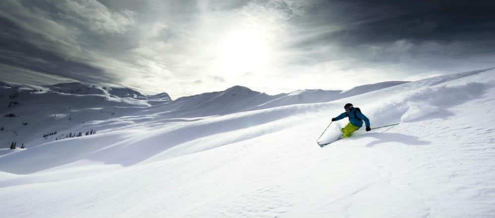 sths-magazine-2013 - Skiier 100x441